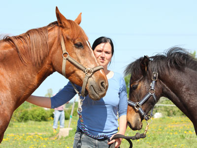 horse stables and tours of Croatian countryside